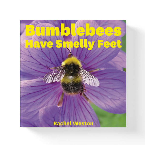 bumblebees have smelly feet book by rachel weston