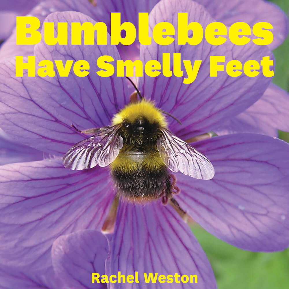 bumblebees have smelly feet book cover